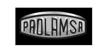 logo prlms